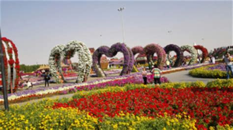 Garden City Eyecare by Dubai Miracle Garden Location Map Timings Entry Fee