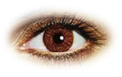 air optix colors pure hazel contact lenses | optyk rozmus