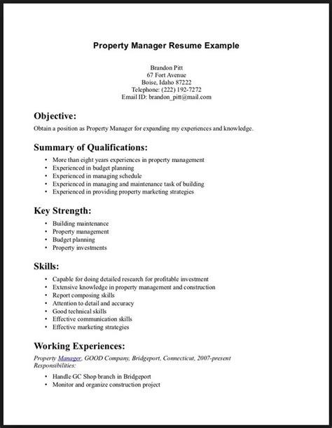 Additional Skills To Put On Resume by What To Put For Skills On A Resume Project Scope Template