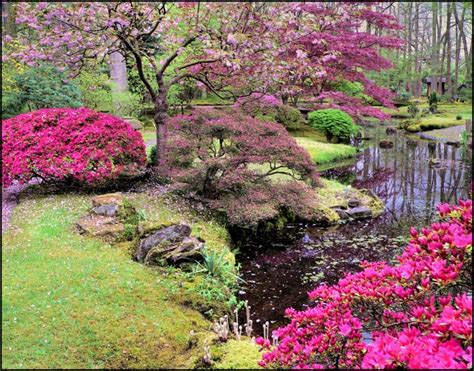 japanische wandlen die besten 25 japenese garden ideen auf