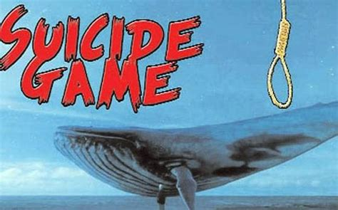 non dangerous challenges blue whale challenge what is it what it is not many