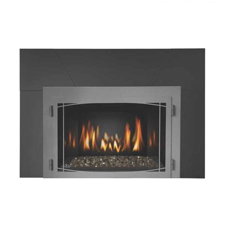 Napolean Fireplace Inserts by Napoleon Ir3gn Basic Fireplace Insert At Ibuyfireplaces