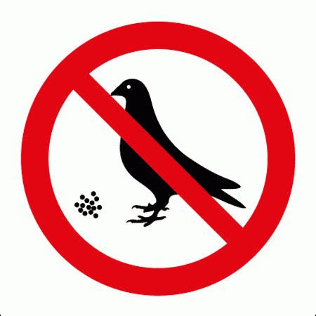 signs for safety   do not feed the birds symbol