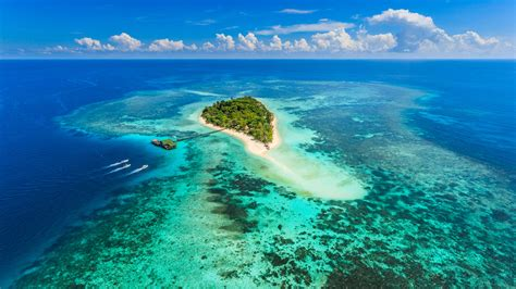 lankayan dive resort lankayan island borneo world safaris