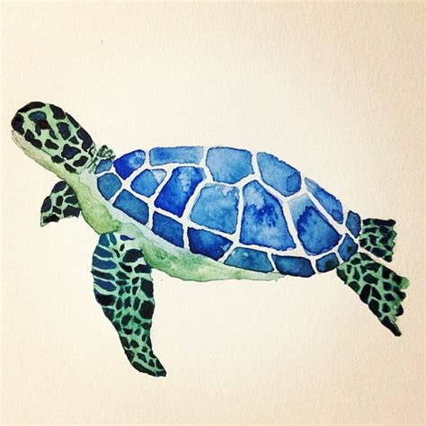 sea turtle water color painting i made my personal pins