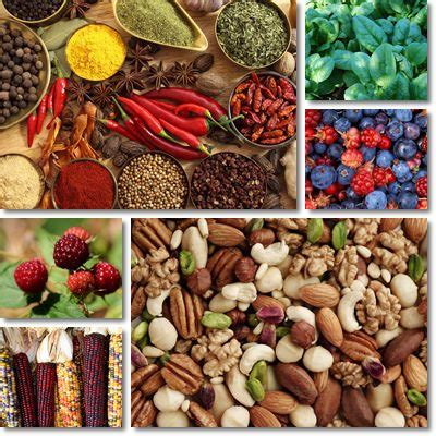 alimenti anti invecchiamento et 224 biologica vitamine proteine