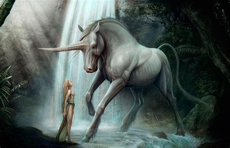 imagenes de pegasos y unicornios reales unicornios y pegasos taringa