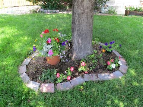 landscaping tips and tricks boulder real estate news