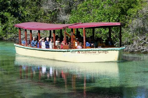 homosassa glass bottom boat tours visit a spring florida department of environmental