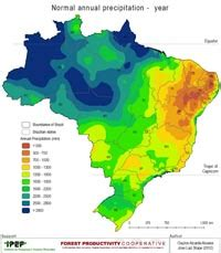brazil rainfall ann – forest productivity cooperative