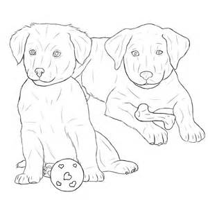 labrador coloring pages chocolate lab free coloring pages