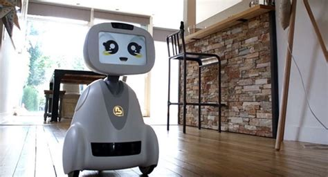 companion robots the future is now constructor