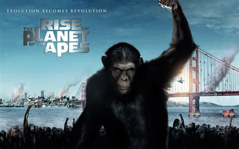 of the planet of the apes rise of the planet of the apes talkiewood
