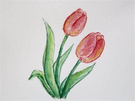 cara menggambar bunga tulip dengan pensil warna