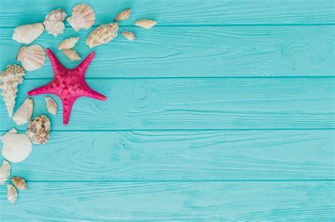 imagenes vintage mar conchas de mar fotos y vectores gratis