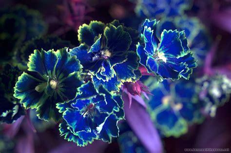 secrets of photoshop s colour blend mode revealed sort of secrets of photoshop s colour blend mode revealed sort of