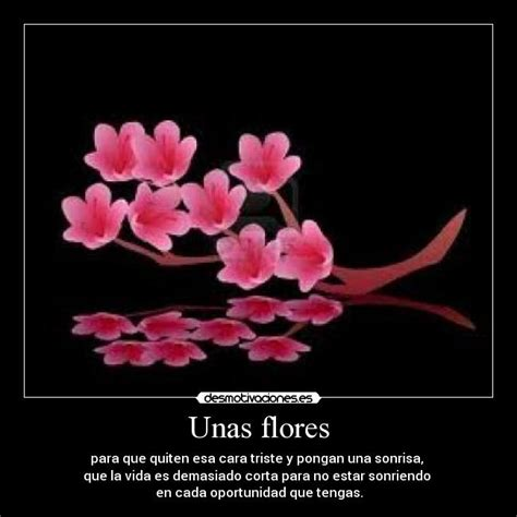 imagenes de flor triste im 225 genes y carteles de sakuras desmotivaciones
