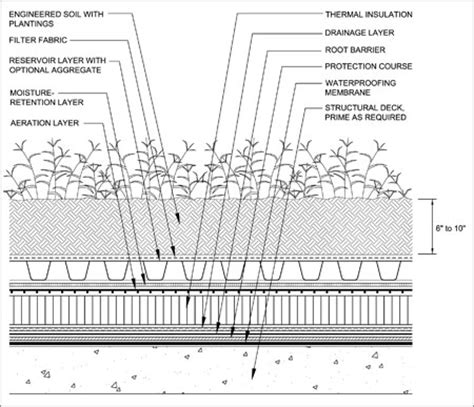 green roof wall section a green roofing resource professional roofing magazine