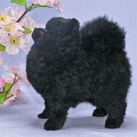 black pomeranian stuffed animal ranran rakuten global market pomeranian plush ブラック