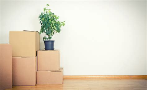 how to downsize your stuff how to downsize your stuff for a move dailyscene