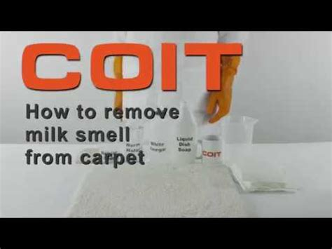 remove milk odor from carpet floor matttroy how to remove milk smell from carpet youtube