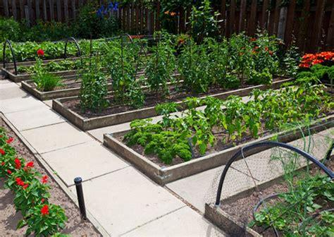 Vegetable Gardening And Growing Tips Preparing For Shtf Preparing A Vegetable Garden Bed