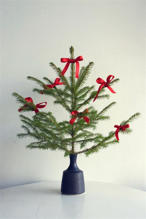 xmas tree tester 20 miniature trees ready to test your diy skills