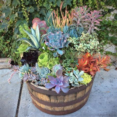 wine barrel planter ideas 25 best ideas about wine barrel planter on wine barrel garden pebble patio and