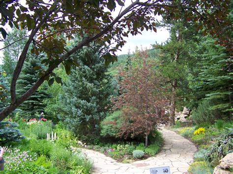 Betty Ford Alpine Gardens by Our Nature The Betty Ford Alpine Garden In Vail