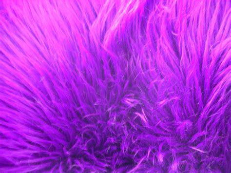 purple fur wallpapers wallpaper cave purple fur wallpaper wallpapersafari