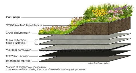 living green roof advantages cnw minimalist green roof achieves purpose
