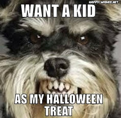 20+ best happy halloween memes images happy wishes