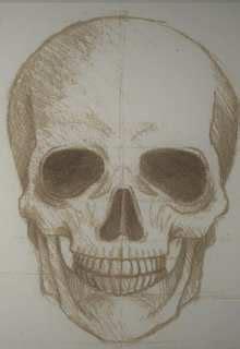 imagenes a lapiz de calaveras dibujos de calaveras para colorear y dibujar dibujos