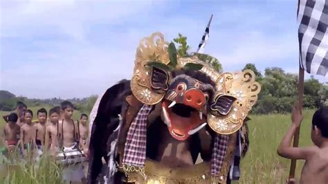 wohnung in bad säckingen degus bati ngelawang doovi