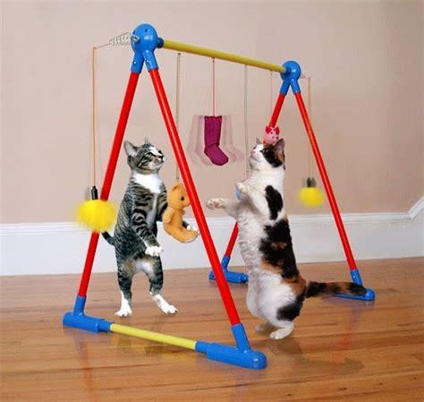 Mainan Kucing Bola Pyramid surabaya cat lover alat bermain kucing