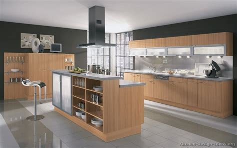 Kitchen Cabinet Modern Modern Light Wood Kitchen Cabinets Pictures Design Ideas