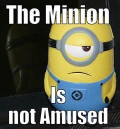 Memes Minions - minion memes www imgkid com the image kid has it