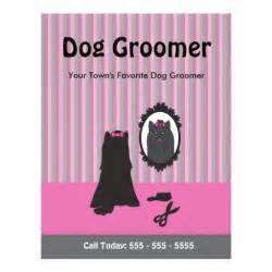 Grooming Flyers Template by 87 Grooming Flyers Grooming Flyer Templates And