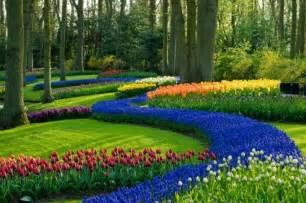 Home Landscaping Design Online by Landscape Design Ideas And Garden Design Ideas