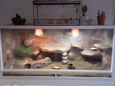 terrarium beleuchtung einbauen tieranzeigen beleuchtung kleinanzeigen