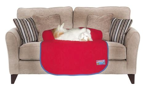 red couch potatoes kunduchi couch potato red buy online in south africa