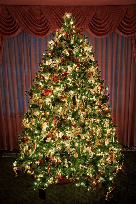 decorated christmas tree 7406 the wondrous pics