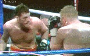 boxer uppercuts himself | best funny gifs updated daily