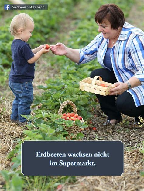 Terrassen Im Garten 2399 by 16 Besten Garten Und Natur Bildzitate Bilder Auf