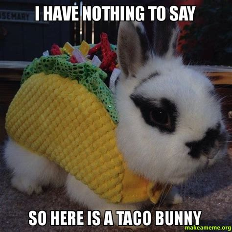 Nothing To Say Meme - i have nothing to say so here is a taco bunny make a meme