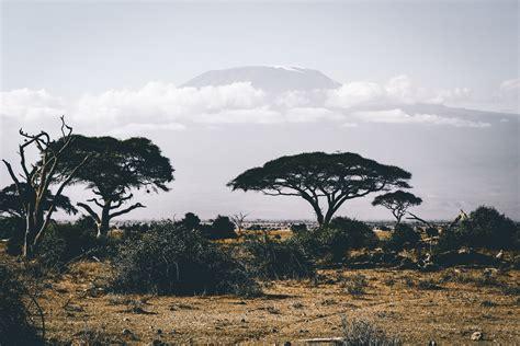 stock photo  adventure africa barefoot