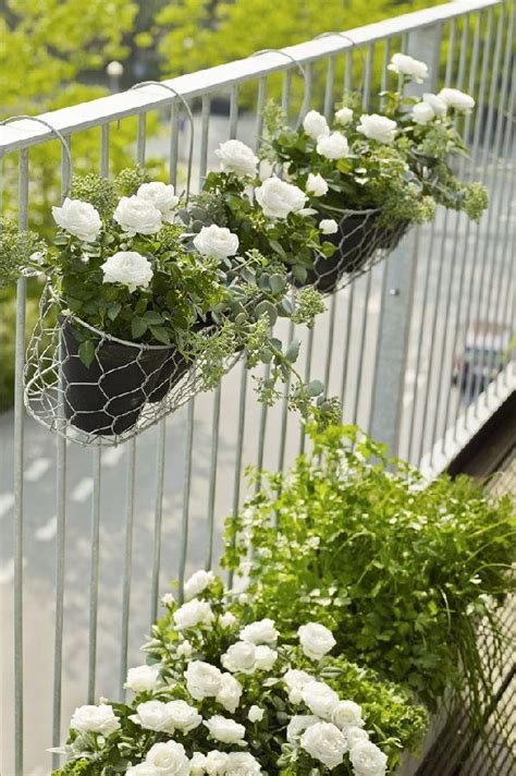 Vertical Garden For Balcony Vertical Balcony Garden Ideas Balcony Garden Web