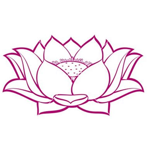 lotus tattoo vector graphics lotus flowers and drawings on pinterest