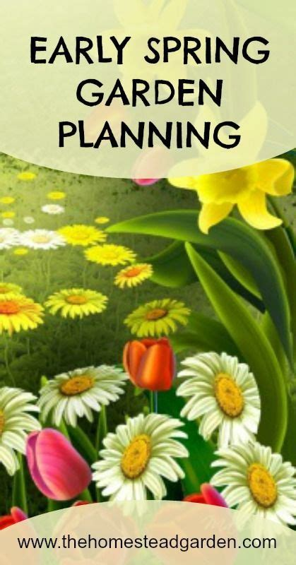 Early Spring Garden Planning Gardens Great Deals And Early Garden Vegetables