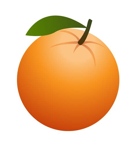 orange clipart orange fruit free clipart